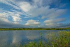 Jasny jezioro z zielonymi roślinami, gęsty zmrok chmurnieje zmierzch łama zdjęcia stock