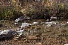 Jasny strumień blisko autostrady 141 w Zachodnim Kolorado Obraz Royalty Free