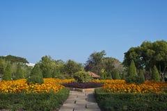 jasnych kwiatów parkowi nieba drzewa Obraz Stock