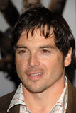 Jason Gedrick Royalty Free Stock Photos