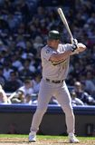 Jason Giambi Oakland A's royalty-vrije stock foto