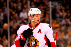 Jason Spezza Ottawa Senators Royalty Free Stock Photo