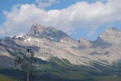 Jaspe, Candian Rockies Foto de archivo libre de regalías