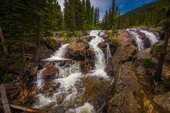 Jasper Creek Falls Colorado Royaltyfri Fotografi