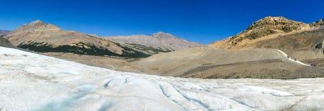 jasper för icefield för alberta athabascaKanada kanadensisk columbia berömd glaciär mest nationalpark tagna rockies Royaltyfri Bild