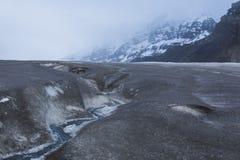 jasper för icefield för alberta athabascaKanada kanadensisk columbia berömd glaciär mest nationalpark tagna rockies Arkivbild