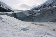 jasper för icefield för alberta athabascaKanada kanadensisk columbia berömd glaciär mest nationalpark tagna rockies Arkivfoton