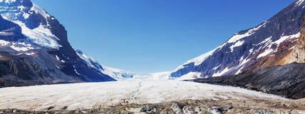 jasper för icefield för alberta athabascaKanada kanadensisk columbia berömd glaciär mest nationalpark tagna rockies Royaltyfri Fotografi