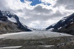 jasper för icefield för alberta athabascaKanada kanadensisk columbia berömd glaciär mest nationalpark tagna rockies Fotografering för Bildbyråer