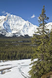 Jasper National Park Royalty Free Stock Photos
