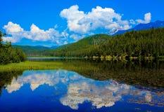 Jasper National Park Arkivbilder