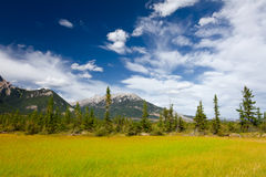Jasper National Park, Alberta, Canada Royalty Free Stock Photo