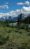 Jasper National Park, Alberta, Canada. Stock Image