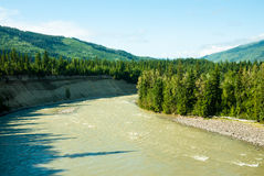 Jasper National Park, Alberta, Canada Royalty Free Stock Image