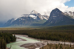 Jasper National park Royalty Free Stock Photography