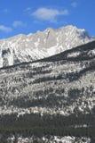 Jasper national park, canada. Jasper national park, alberta, canada, mountain range in snow, below forest Royalty Free Stock Photos