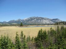 Free Jasper National Park, Canadian Rockies, Alberta, Canada - Floodplain Of Athabasca River Stock Image - 170530291