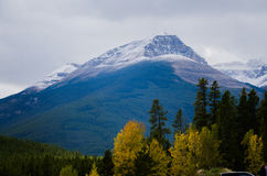 Jasper National Park Stock Image