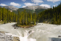 Jasper National Park Sunwapta Falls Royaltyfria Foton