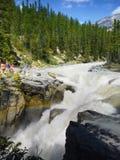 Jasper National Park, Sunwapta Falls Image libre de droits