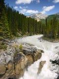 Jasper National Park Sunwapta Falls Royalty Free Stock Images