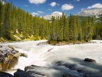 Jasper National Park, Sunwapta Falls. Sunwapta Falls and canyon in Jasper National Park. Canadian Rocky Mountains. Canada Royalty Free Stock Images