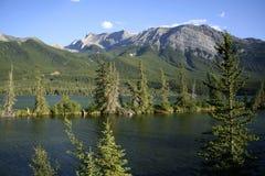 Jasper National Park Views Foto de Stock Royalty Free