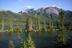 Jasper National Park Views Royalty Free Stock Photo