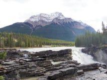 Jasper National parkerar, Cananda Royaltyfri Fotografi