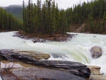 Jasper National parkerar, Cananda Fotografering för Bildbyråer