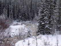 Jasper Park Lodge, Rocky Mountains, Canadá occidental imagen de archivo