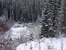 Jasper Park Lodge, Rocky Mountains, Westelijk Canada stock afbeelding