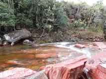 Jasper ravine in the jungle of Gran Sabana Amazonas Venezuela South America. stock image