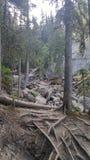 Jasper Trails lizenzfreie stockfotos
