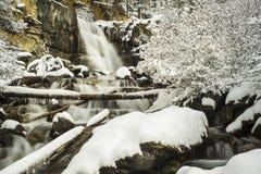 jasperen för alberta banff Kanada fallsicefields lokaliserade av gångallétangle Royaltyfri Bild