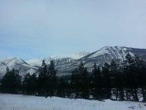 jaspis Alberta stock foto's
