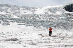 JASPIS, ALBERTA/CANADA - 9. AUGUST: Jaywalking auf dem Athabasca stockbilder
