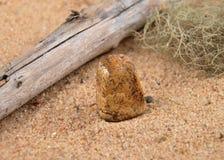 Jaspis na plaży, Obrazy Stock