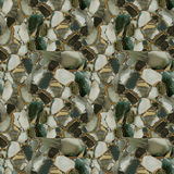 Jaspis pustyni zieleń Zdjęcia Stock