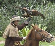 Jastrząbek i jeździec Obraz Royalty Free