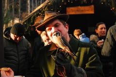 Jastrząbek umieszcza na ręce sokolnik Obrazy Royalty Free