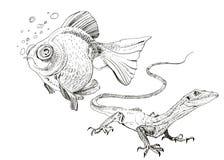 Jaszczurka, ręka malował rysunek kontur Obrazy Royalty Free
