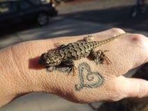Jaszczurki i tatuaże obrazy stock