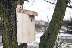 Jata dla ptaków na drzewach Drewniany birdhouse na drzewie fotografia stock