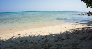 Jata od drzewa jak cień na pogodnej plaży na brzeg w karimun jawie Indonesia obrazy stock