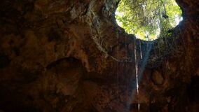 Jatijajar Cave hole opening with ray of light. Located in Kebumen, tilt down stock video footage