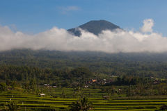 Jatiluwih rice terraces in Bali and mountain with clouds Royalty Free Stock Photos