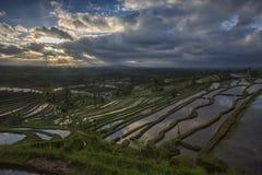 Jatiluwih wschód słońca fotografia stock