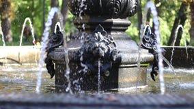 Jato de água principal da fonte do leão vídeos de arquivo