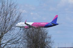 Jato de Wizz Air Airbus A321-200 HA-LXA visto através dos ramos Foto de Stock